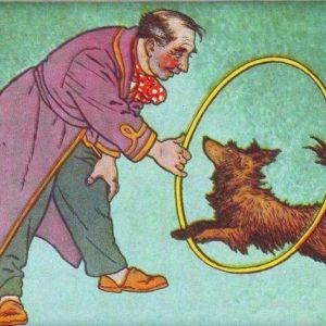 Собачка в переплете